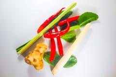 Placez des herbes et des ingrédients frais de la nourriture ou du Tom épicée thaïlandaise yum sur le fond d'isolement blanc photos stock