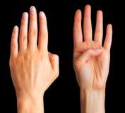 Placez des mains de femme montrant quatre doigts et paumes photos libres de droits