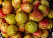 Placez des poires appétissantes dans un panier photos libres de droits
