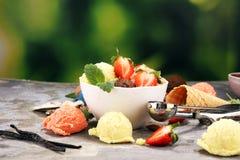 Placez des scoops de crème glacée de différentes couleurs et saveurs avec des baies et des fruits image stock