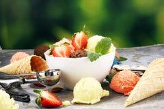 Placez des scoops de cr?me glac?e de diff?rentes couleurs et saveurs avec des baies et des fruits photos stock