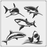 Placez des silhouettes de requin Conception d'impression pour des T-shirts illustration stock