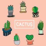 Placez du cactus mignon et des autres plantes dans le pot illustration de vecteur