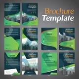 Placez du calibre de disposition de conception d'insecte de brochure d'affaires - le vecteur Eps10 images libres de droits