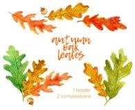Placez du chêne tiré par la main d'automne d'aquarelle laisse des éléments illustration stock