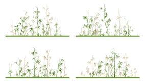 Placez du label horizontal avec les arbres en bambou illustration libre de droits
