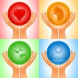 Placez l'eau transparente de pousse d'embryon de coeur de sphère de main Image stock