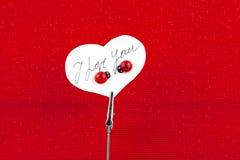 Placez la carte avec le message d'amour Images libres de droits