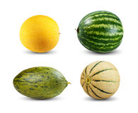 Placez la collection du melon et de la pastèque d'isolement sur le fond blanc Photo libre de droits