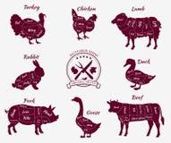 Placez la vue schématique des animaux pour le boucher Shop illustration stock