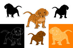 Placez le chien de teckel illustration stock