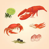 Placez le crabe et les écrevisses de fruits de mer illustration stock