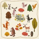 Placez les animaux de région boisée et le Forest Design Elements mignon, style de bande dessinée, vecteur, d'isolement Illustration Stock