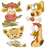 Placez les animaux familiers Images stock