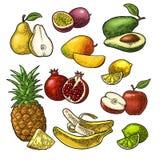 Placez les fruits Ananas, chaux, banane, grenade, maracuya, avocat Images stock