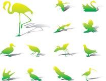 Placez les graphismes - 39A. Oiseaux illustration stock