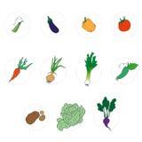 placez les légumes Photos libres de droits