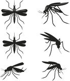 Placez les moustiques Photos stock