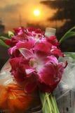 Placez les offres de matin de la nourriture, de l'argent et de la fleur pour le moine Images stock