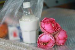 Placez les offres de matin de la nourriture, de l'argent et du lotus pour le moine Photo stock