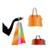 Placez les sacs de la femme   illustration stock