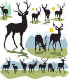 Placez les silhouettes de cerfs communs de vecteur Photographie stock