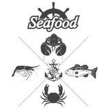 Placez les symboles de fruits de mer Photographie stock