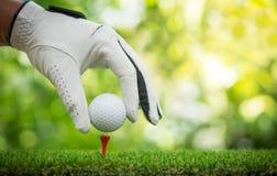 Placing ball on tee. Golf players hand placing ball on tee Royalty Free Stock Image