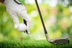 Placing ball on tee. Golf players hand placing ball on tee Stock Image