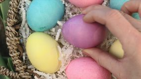 Placing colorful Easter eggs into Easter Basket stock video