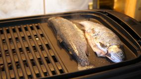Placing fish and onion on the grill. Hand placing fish and onion on the grill stock footage