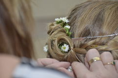 Placing flowers in hair. Hairdresser placing little white flowers in blonde girls hair royalty free stock images