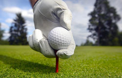 Placing golf ball on a tee. Photo of a hand Placing golf ball on a tee Royalty Free Stock Photo