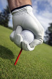 Placing golf ball on a tee. Close up stock photo