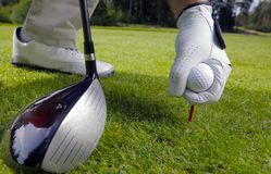 Placing golf ball on a  tee Royalty Free Stock Photography