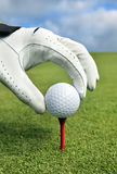 Placing golf ball on a tee. Photo of a hand Placing golf ball on a tee Royalty Free Stock Images