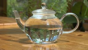 Placing Lid on Glass Teapot. Steady, medium close up shot of a hand placing a lid onto a glass teapot filled with water stock video footage