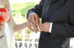 Placing the ring. Groom placing wedding ring on bride's finger Stock Photography