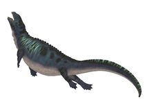 Placodus Dinosaur Side Profile Stock Image