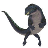 Placodus Dinosaur on White Royalty Free Stock Images