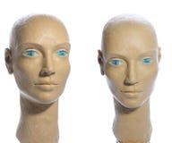 Placticine head Stock Images