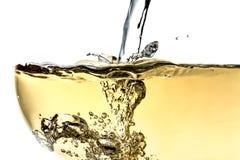 Pladask vitt vin i exponeringsglas med textur för bubblanärbildmakro som överst isoleras på vit bakgrund arkivfoto