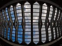 Plafond de Fisheye dans l'Okinawa photographie stock libre de droits