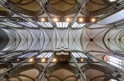 Plafond van Roman Catholic Cologne Cathedral, Duitsland stock foto's