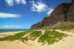 Plage à distance de parc d'état de Polihale, entourée par des montagnes, Kauai, Hawaï, Etats-Unis photographie stock libre de droits