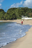 Plage à la baie Barbade de roseaux Photographie stock libre de droits