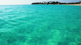 Plage étonnante de mer des Caraïbes de beauté Île d'Aruba Beau fond de nature clips vidéos