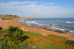 plage Кипра северный Стоковые Фото