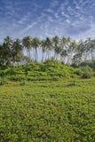 Plage 2 d'Induruwa Photos stock