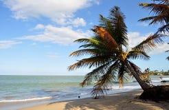 Plage 2 du Porto Rico Images libres de droits
